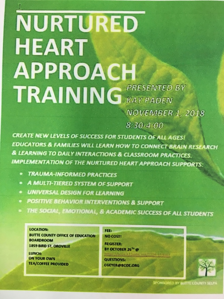 Nurtured Heart Approach Training