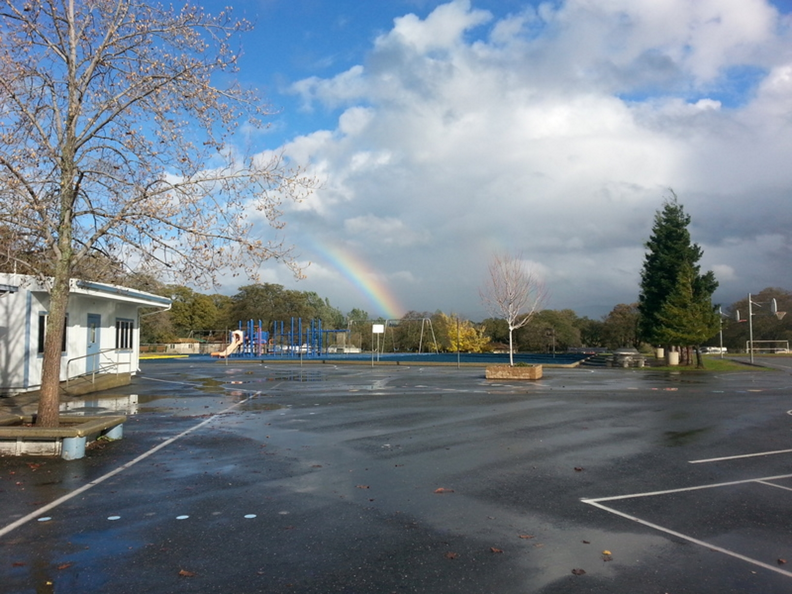 Rainbow appearing to start behind Helen Wilcox
